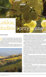 Wino Magazyn – dicembre 2012 (Polonia)